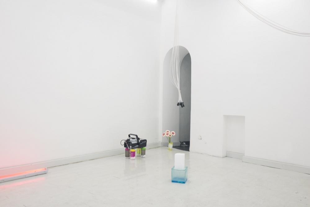 OPERATIVA ARTE CONTEMPORANEA :: Exhibition :: ENRICO BOCCIOLETTI | Daisyworld
