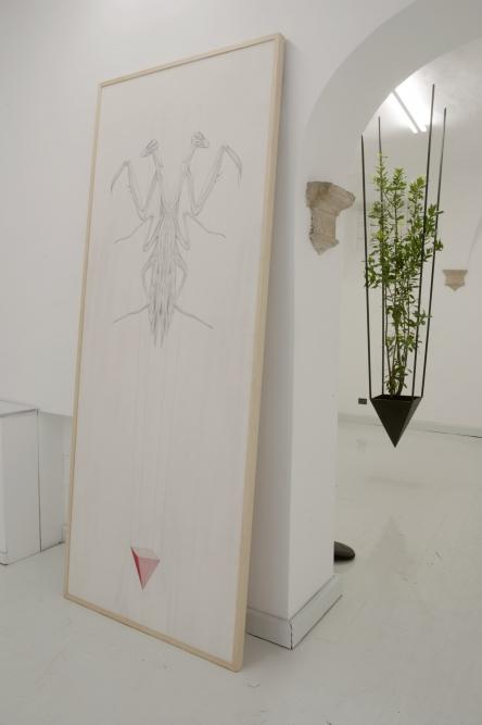 OPERATIVA ARTE CONTEMPORANEA :: Exhibition :: LEONARDO PETRUCCI | Antropofagia Simbiotica