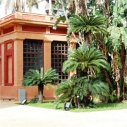 MUSEO DELLE PALME | curated by LA Project Space - OPERATIVA ARTE CONTEMPORANEA