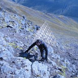 ALESSANDRO VIZZINI | Post Islanda (Catabasi con Giardino Giallo) - OPERATIVA ARTE CONTEMPORANEA